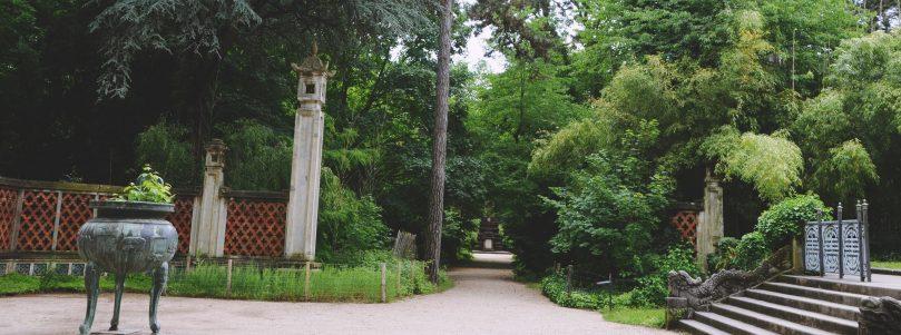 Paris est un Jardin tropical